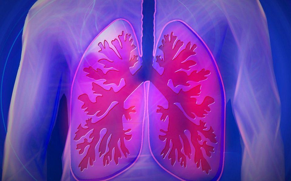 Ejercicios para los pulmones: Cómo fortalecer este órgano