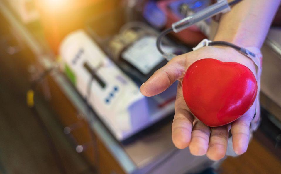Esto debes saber sobre la donación de sangre (Getty).