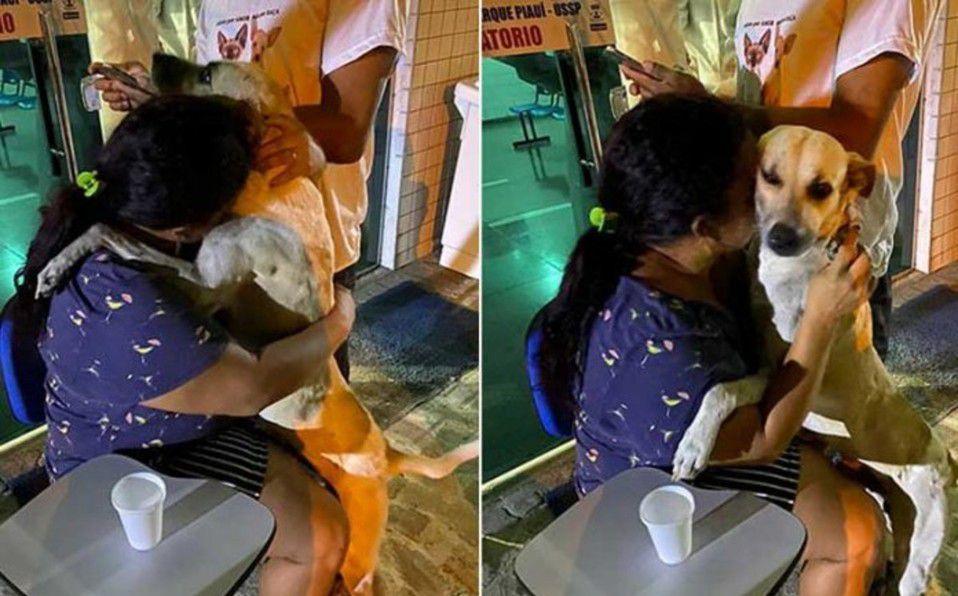 Mujer adopta a perrito callejero
