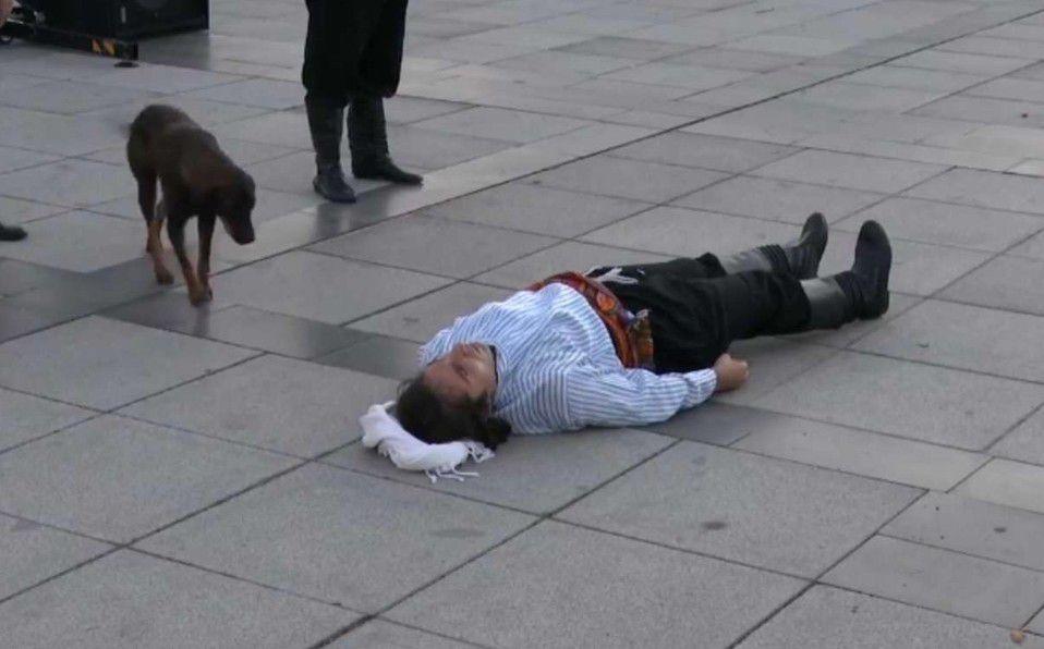 Perrito callejero se vuelve viral