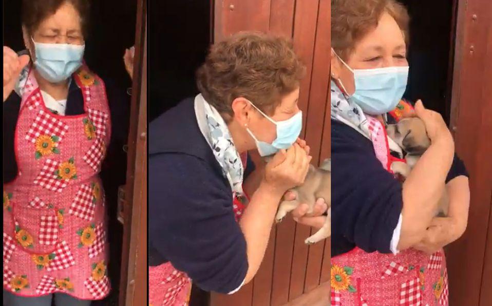 La reacción de la abuelita se hizo viral (Captura de pantalla).