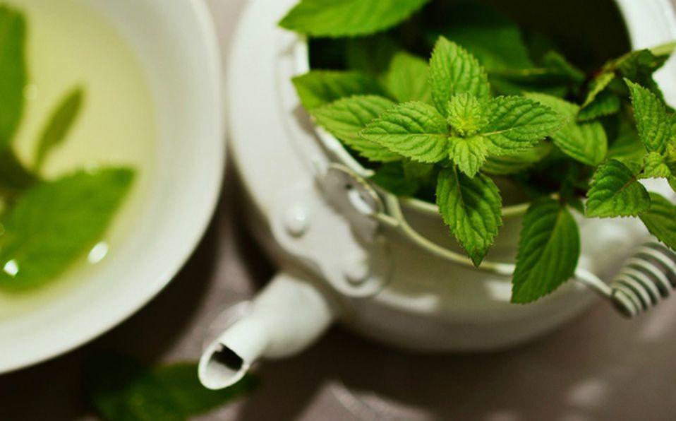 Para qué sirve el té de menta